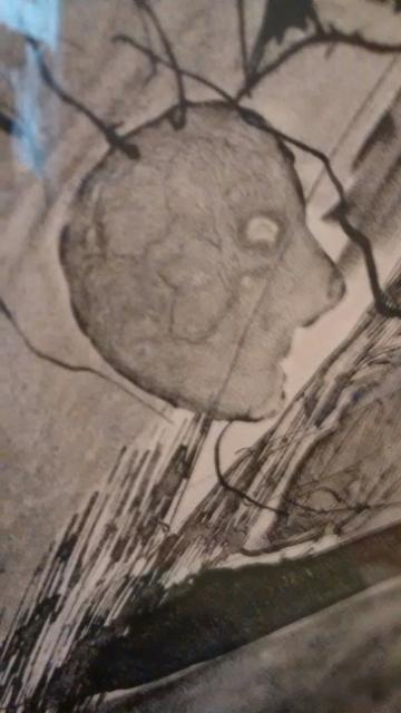 oliveiradetail1964