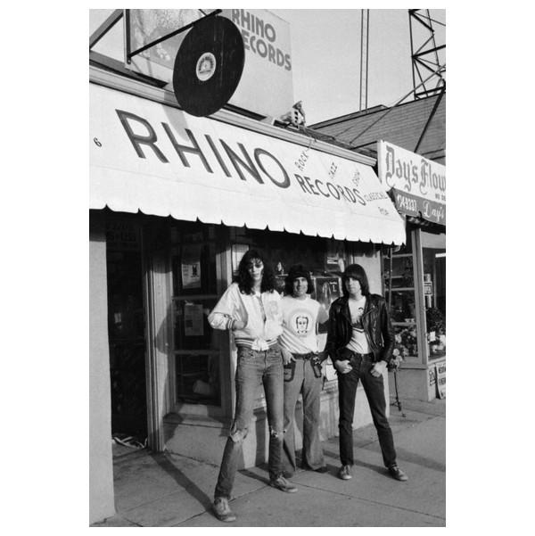 Howard Stern, Richard Stern and David Stern, the rhinoplasty brothers?